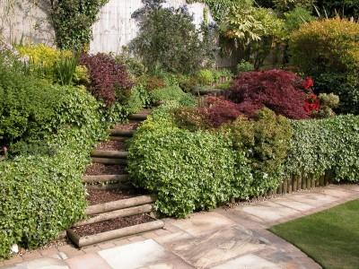 Bournemouth Garden Designers