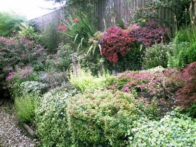 Dorset soft Landscaping