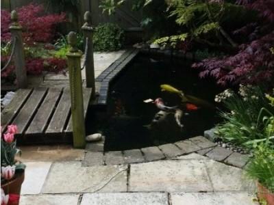 Bespoke Garden Designers Bournemouth