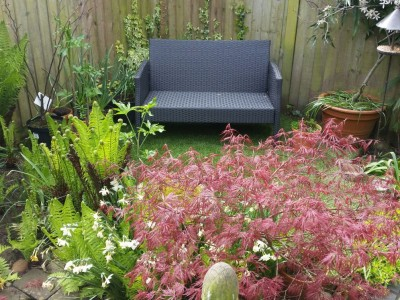 Nicholas Lever Landscapes Gardening Services in Bournemouth