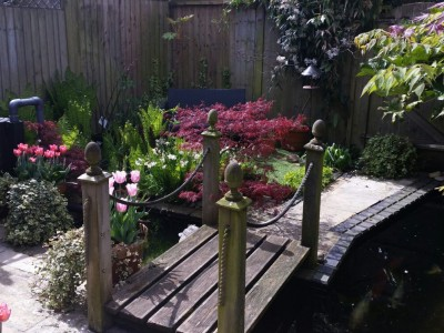 Nicholas Lever Landscapes Garden Designers in Bournemouth