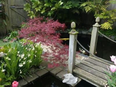 Nicholas Lever Landscapes Garden Design in Bournemouth