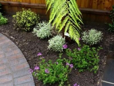 Landscape Gardeners Dorset