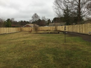 Fencing Complete